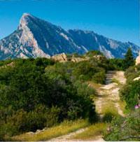 Bergen liegt Sardinien.