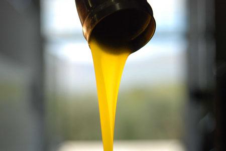 Frisch gepresstes Olivenöl - flüssiges Gold