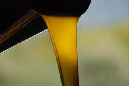frisch gepresstes Olivastro Olivenöl