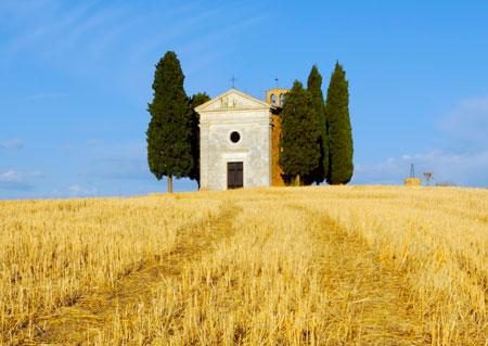 Ein abgeerntetes Weizenfeld in Apulien.