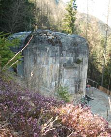 Der Bunker im Wald