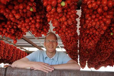 Aus Piennolo-Tomaten kann Tomatenessig hergestellt werden.