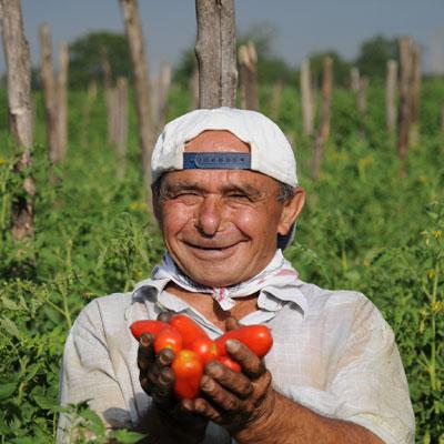 ..oder aus San-Marzano-Tomaten