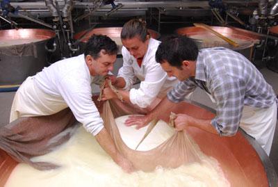 Kräftige Arme sind bei der Herstellung von Parmesan nötig