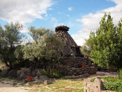 Typisch sardische Schäferhütte mit Olivenbaum