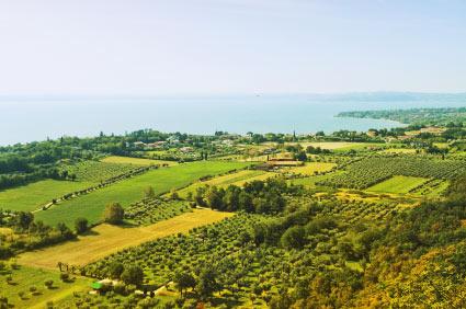 Landschaft Franciacorta
