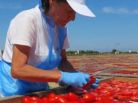 i Conatdini - Liebevoll wird jede Tomate halbiert