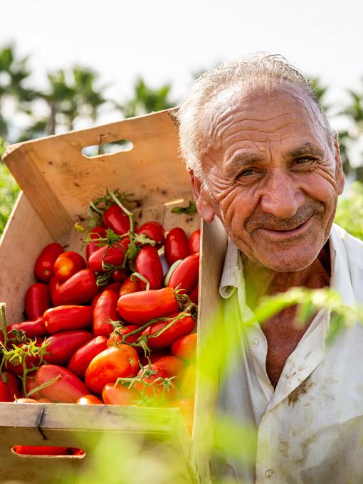 San Marzano – Porträt einer Tomatensorte