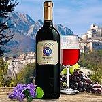 Pianoro Montepulciano d Abruzzo DOC Rotwein Italien
