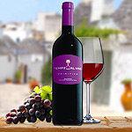 Salento IGT Primitivo Rotwein Apulien Tempo al vino