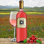 Pianoro Cerasuolo DOC Rose aus 100 Prozent Montepulciano Rosewein Abruzzen