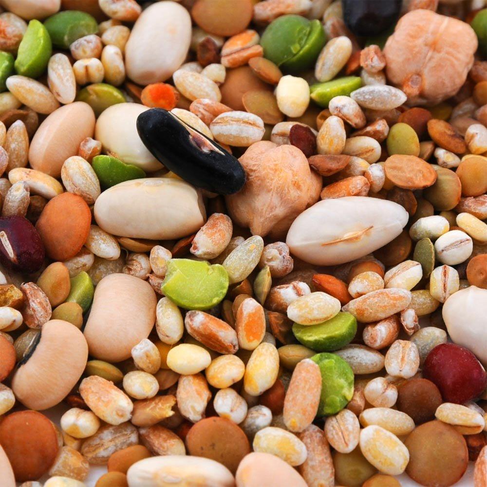 Bauernsuppe mit H�lsenfr�chten und Getreide