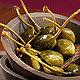 Kapernäpfel in Weinessig frutti di cappero Zuccato