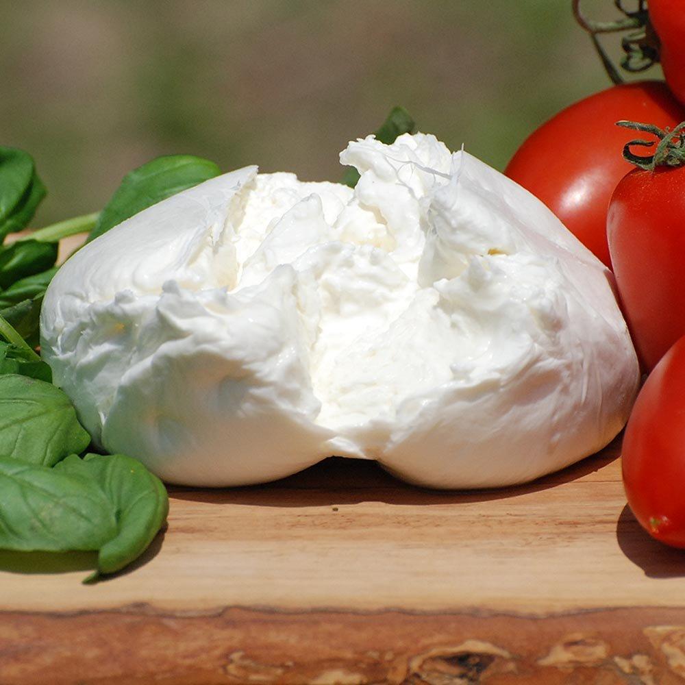 Burrata Bio K�se Spezialit�t aus Italien