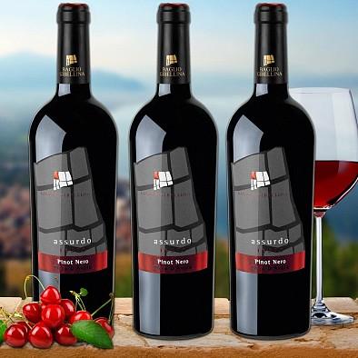 Assurdo Pinot Nero e Nero D'Avola 3er Pack Baglio Gibellina