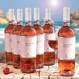 Primitivo Rose IGT Puglia 6er